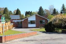Detached Bungalow for sale in Springvale Road...