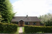 4 bed Bungalow to rent in Boyne Rise, Kings Worthy...