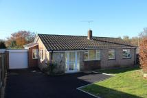 4 bed Detached Bungalow in Elizabeth Close...