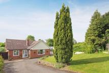 property for sale in North Drive, Littleton, Winchester