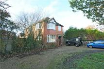 Detached house in Reading Road, Wokingham...