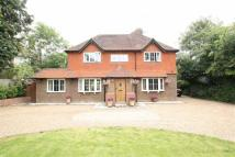 4 bedroom Detached house in Southgate