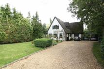 Detached house for sale in Crutchfield Lane