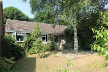 Bungalow for sale in St Margarets Gardens...