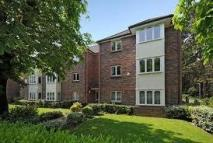 2 bed Flat in Odette Court...