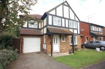 Detached house to rent in Laburnum Road, Wokingham