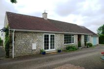 3 bed Detached Bungalow for sale in YO17