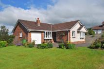 Bungalow for sale in The Parklands, Penrith