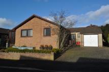 3 bed Bungalow in White Ox Way, Penrith