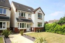 5 bedroom Detached property for sale in Newton Road, Bletchley...
