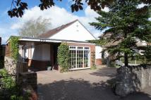 Detached Bungalow in Goldington Road, Bedford...