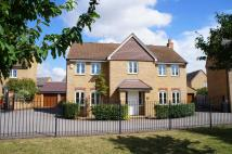 Detached home for sale in The Glebe, Clapham, MK41