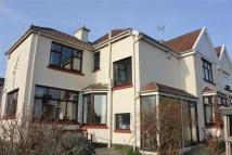 4 bed semi detached house in Kellaway Avenue...