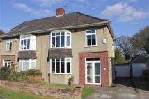 3 bed semi detached house for sale in Sandyleaze...