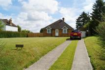 3 bed Bungalow to rent in Perry Lane, Bledlow...