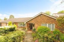 Detached Bungalow in Sheepwalk Lane...