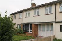Garden Avenue Terraced property to rent