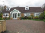 Harrold Detached Bungalow for sale