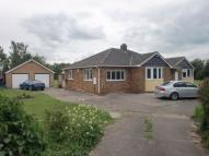 Detached Bungalow for sale in Willowfield, Moss Road...