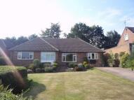 3 bedroom Detached Bungalow in Moorlands, Wickersley...