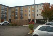 1 bed Apartment in Pine Court, Basildon...