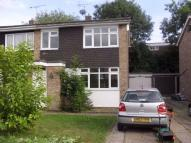 3 bedroom semi detached house to rent in Prittle Close...