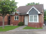 Detached Bungalow in Michael Blanning Place...