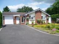 3 bed Detached Bungalow for sale in Morpeth, Dosthill, B77