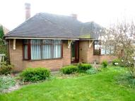 Detached Bungalow in Engine Lane, Glascote...