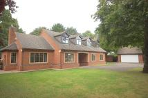 Detached Bungalow for sale in Manor Park...