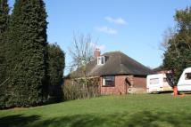 Detached Bungalow for sale in Cliff Hall Lane, Cliff...