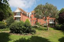 property to rent in Chesterfield Road, Eastbourne