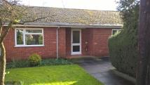 Bungalow in Priory Hill, Rugby Road...