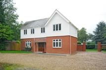 Detached house to rent in Arbour Close, Bilton