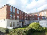 Flat to rent in Morton Gardens...