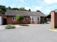 3 bed Detached Bungalow for sale in Medbourne Road, Hallaton...