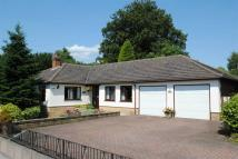 Detached Bungalow for sale in Fosbrooke Close...