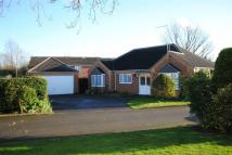 3 bed Detached Bungalow in Illston Gardens...