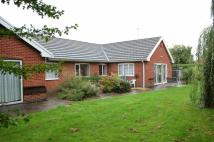 Detached Bungalow for sale in Tournament Road...