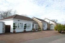 Maytree Drive Detached Bungalow for sale