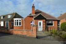 Detached Bungalow for sale in Elizabeth Drive, Oadby...