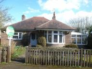 Detached Bungalow for sale in Welbeck Avenue, Burbage