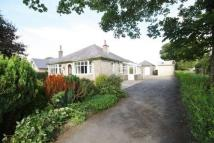 Detached Bungalow to rent in Redlands, Eaglesfield...