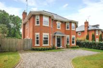 5 bed Detached house to rent in The Avenue, Crowthorne...