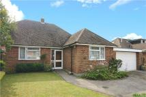 3 bed Bungalow for sale in Farm Close, Crowthorne...