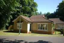 2 bed Semi-Detached Bungalow for sale in Cedars Village...