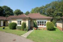 Detached Bungalow for sale in Cedars Village...