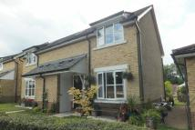 2 bedroom semi detached house for sale in Cedars Village