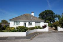 Detached Bungalow for sale in Turnpike Close, Helston...