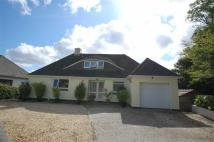 Detached Bungalow for sale in Nansloe Close, Helston
